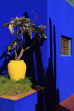 Majorelle Gardens, Marrakesh, Morocco Royalty Free Stock Photos