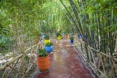 Majorelle Gardens in Marrakesh Stock Photo