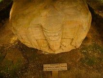 Majowia archeologiczny miejsce Quirigua, Gwatemala - Zdjęcia Royalty Free