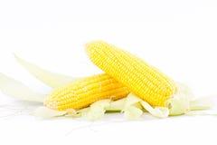 Majs på majskolvkärnor eller korn av mogen havre på vit bakgrund konserverar den isolerade grönsaken Arkivfoton