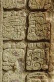 Majscy hieroglify, Copan, Honduras fotografia stock