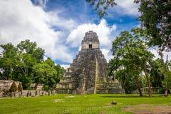 Majska świątynia Ja Gran Jaguar przy Tikal parkiem narodowym - Gwatemala Zdjęcie Stock