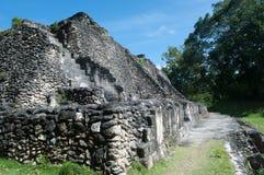 Majska ruina - Xunantunich w Belize Fotografia Stock