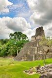 majskie Belize ruiny Obrazy Stock