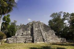 Majskie Chacchoben Ruiny zbliżać Costa Majowie Meksyk obraz stock