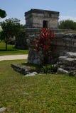 Majskie ruiny zdjęcia stock