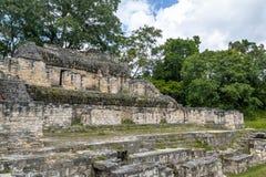 Majskie ruiny przy Tikal parkiem narodowym - Gwatemala obraz stock
