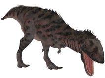 Majungasaurus Crenatissimus - 3D Dinosaur Stock Photo