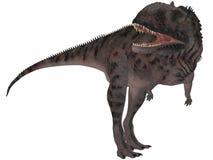 Majungasaurus Crenatissimus - 3D Dinosaur Stock Image