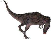 Majungasaurus Crenatissimus - 3D Dinosaur Stock Images