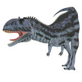 Majungasaurus drapieżnik Zdjęcia Royalty Free