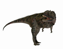 Majungasaurus mięsożerni dinosaury royalty ilustracja