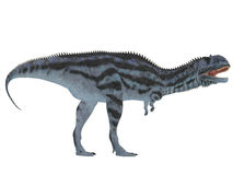 Majungasaurussidoprofil Royaltyfri Bild