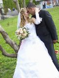makabröllopfru Arkivbild
