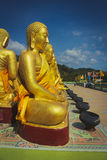 many buddha statue Royalty Free Stock Photo