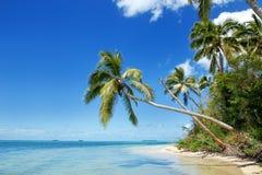 Makaha& x27岸; 在汤加塔布岛海岛附近的一个海岛在汤加 免版税库存照片