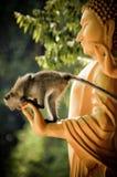 Makaken, der einen Buddha in Krabi, Thailand klettert Stockfotografie