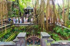 Makakenaffen am heiligen Affe-Wald Ubud, Bali Lizenzfreie Stockbilder