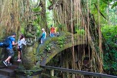 Makakenaffen am heiligen Affe-Wald Ubud, Bali Stockfoto