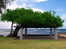 Makalei Beach Park. Diamond Head, Oahu, Hawaii Royalty Free Stock Photos