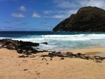 Makapuu Beach. Midday at Makapuu Beach, Windward Oahu, Hawaii Stock Photos