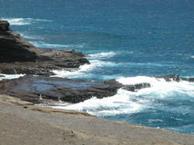 Makapuu Ozean-Frontseite Lizenzfreies Stockbild