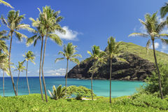 Makapuu Point Royalty Free Stock Images