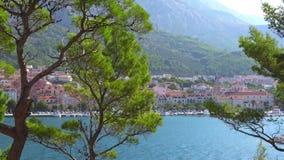 Makar Riviera, Croacia Vista de los árboles de pino verdes hermosos en el fondo de la ciudad vieja almacen de video