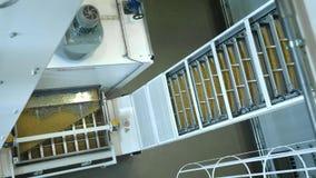 Makaron fabryka i makaron produkcji sceny Zamyka w górę suchego makaronu rozlewa od maszynowej jednostki na nowożytnej produkcji  zdjęcie wideo