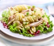 Makaron sałatka z avacado i makrelą Zdjęcie Stock