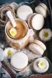 Makarons vanilj Royaltyfria Foton