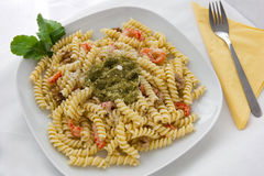 makaronu pesto Obraz Royalty Free