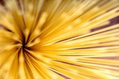 Makaronu spaghetti abstrakta tło Obrazy Stock