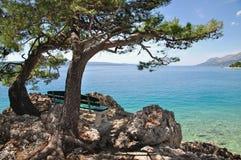 makarska riviera Хорватии dalmatia brela стоковые изображения rf