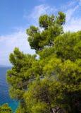 Makarska Riviera Foto de Stock
