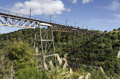 Makatote高架桥北岛新西兰 免版税图库摄影