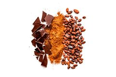 Free Make Chocolate. Cocoa Powder Near Cocoa Beans And Pieces Of Chocolate On White Background Top View Copy Space Stock Image - 107911481