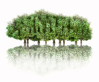 Make the city green. Group of tree shaped building Stock Images