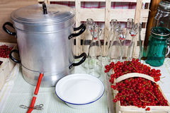 Make currant syrup with steam juicer. Steam juicer, kitchen utensils and ingredients for manufacturing of currant syrup Stock Image
