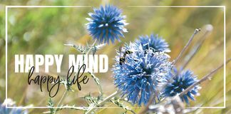 Happy mind, happy life. Wording design, lettering. Beautiful inspirational, motivational, life quotes. Blue flower in nature