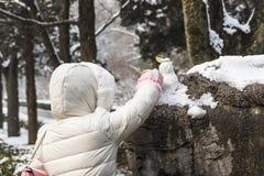 Make a snowman Stock Photos