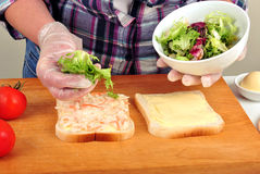Make toast bread with some organic salad royalty free stock images