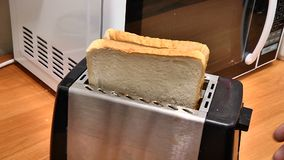 Make toast in the toaster. Closeup stock video footage