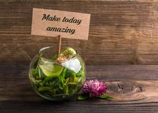 Make today amazing. Text on sign board with flower and leafs on wood royalty free stock images