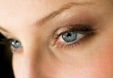 Make-up. Female eyes with dark brown make-up Royalty Free Stock Image