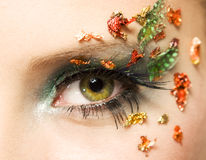 Make up. Eye with beautiful make-up Royalty Free Stock Images