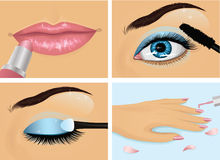 Make-up. Set of female body part Royalty Free Stock Images