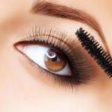 Make-up. Applying Mascara. Long Eyelashes royalty free stock photos