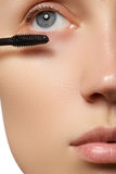 Make-up artist applies eyelashes make-up. Beautiful woman face. Perfect make-up Stock Photos