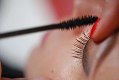 Make-up artist applying mascara with brush, eyes close up Stock Images